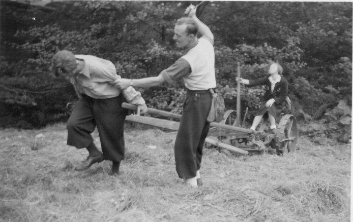 September 1939: Im Ernteeinsatz
