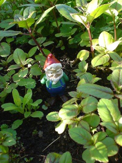 Kleiner Gartengnom